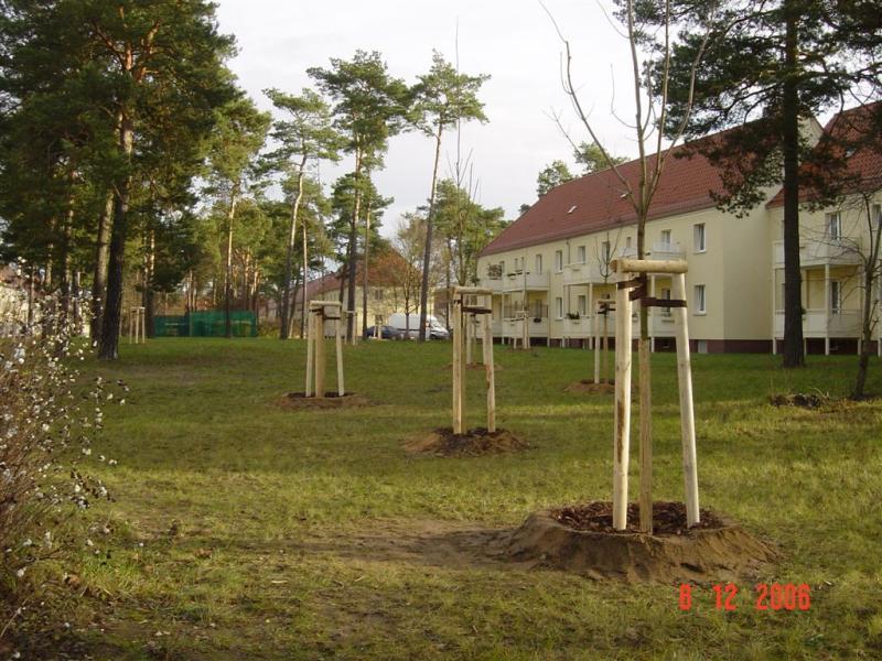 2004 – 2008 Eberswalde2004 – 2008 Eberswalde
